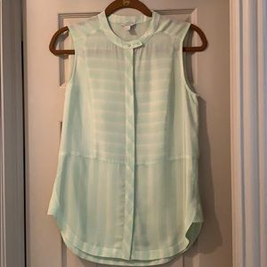 Fossil Silk Mint Top